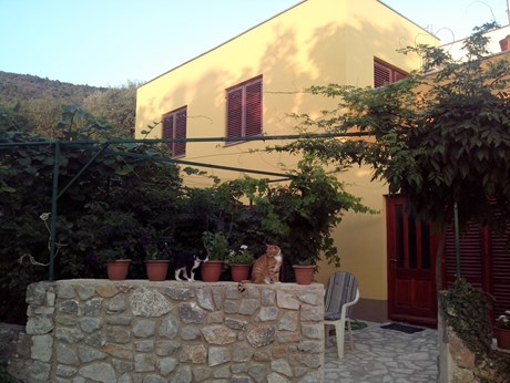 Apartments Dunja, Cres