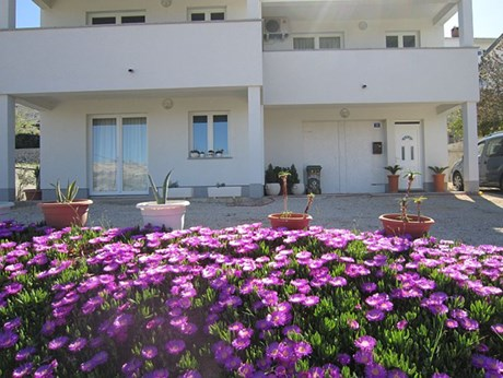 Apartments Veronika, Pag