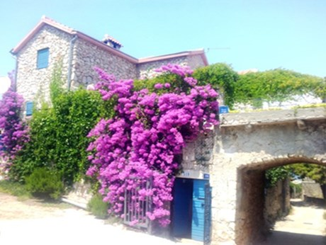 Cottage house Villa Antiqua, Island Pasman